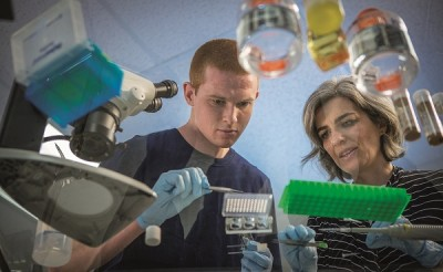 Patrick Lenehan '15 (CLAS) studied the role of RNA transcripts in the formation of centromere complexes in Drosophila with a 2014 SURF Award.