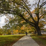Students walking near South Campus in the Fall