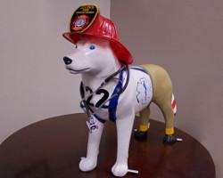 Health and Safety Husky